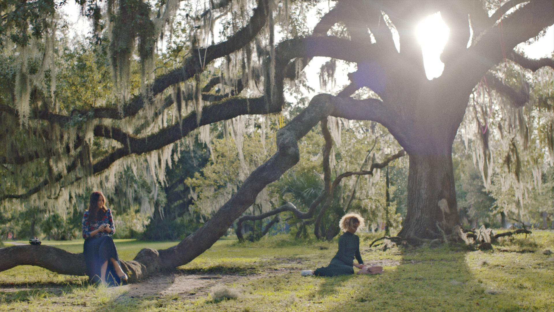 City Evocation: The Color of New Orleans